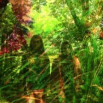 Two teenage girls blend into their forest surroundings