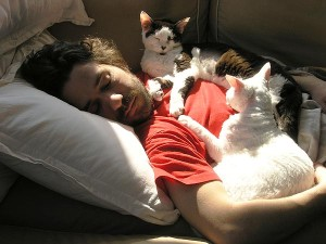 Kent Lambert takes a nap between media remixes with his special kitties Mochi and Asha