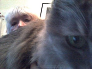 Squeeky, a very furry gray cat, blocks her companion, Salise Hughes, out of the frame.