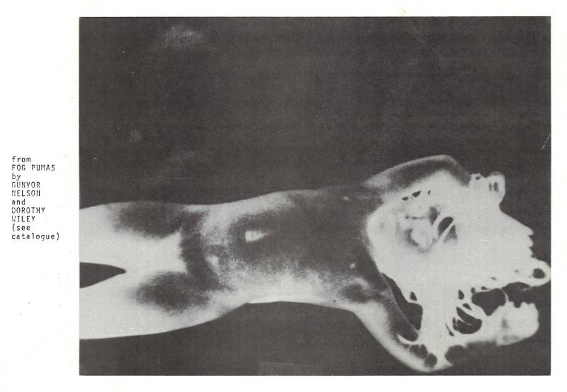 Film still from Fog Pumas by Gunvor Nelson and Dorothy Wiley
